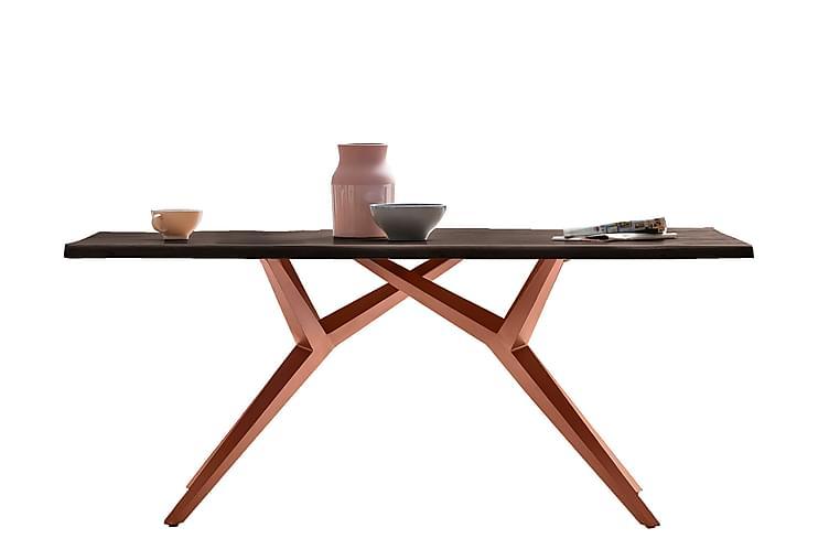 Ruokapöytä Raital 200x100 cm - Harmaa / Ruskea - Huonekalut - Pöydät - Ruokapöydät & keittiön pöydät