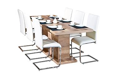 ABSOLUTO Pöytä 160 Villitammi +  6 PHOENIX tuolia Valkoinen