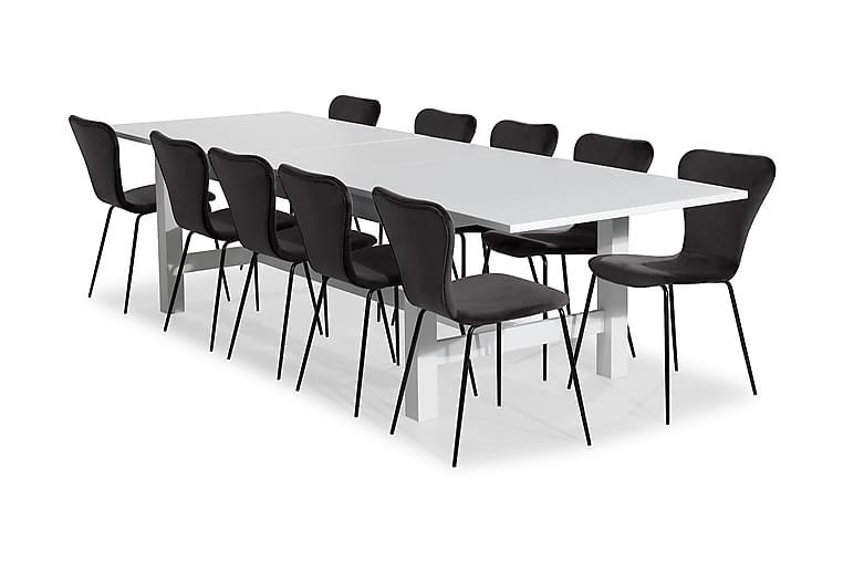 Ruokailuryhmä Isadora Jatkettava 240 cm 10 Miko tuolilla Sam - Valkoinen/Harmaa - Huonekalut - Ruokailuryhmät - Kulmikas ruokailuryhmä