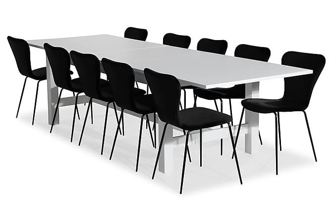 Ruokailuryhmä Isadora Jatkettava 240 cm 10 Miko tuolilla Sam - Valkoinen/Musta - Huonekalut - Ruokailuryhmät - Kulmikas ruokailuryhmä