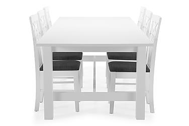 Ruokapöytä Isadora + 6 Magdalena tuolia