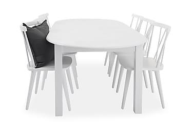 Ruokailuryhmä Siri Jatkettava 160 cm Ovaali 6 Steinar tuolia