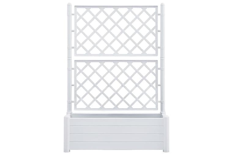 Kukkalaatikko säleiköllä 100x43x142 cm PP valkoinen - Valkoinen - Puutarhakalusteet - Tarvikkeet ulos - Ruukut ulkokäyttöön