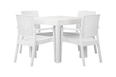 LEORA Pöytä 80 + 4 tuolia Valkoinen