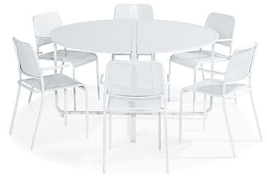 Ruokailuryhmä Flippy 140 Pyöreä + 6 Logan tuolia käsinoja