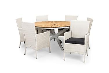 Ruokailuryhmä Olive 140 Pyöreä + 6 Thor tuolia pehmuste