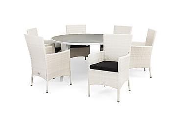 Ruokailuryhmä Sierra 140 Pyöreä + 6 Thor tuolia pehmuste