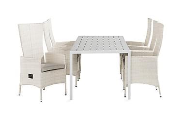 Ruokailuryhmä Tunis 205x90 + 6 Jenny tuolia Pehmuste