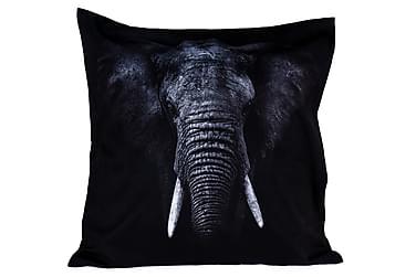 Tyyny Elefantti