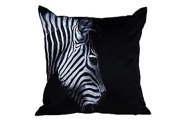 Tyyny Zebra