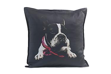 Tyynynpäällinen Bulldog 48x48 Musta