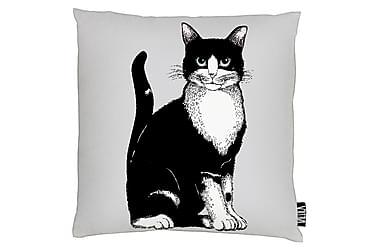 Tyynynpäällinen Kitties 43x43 grey