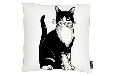 Tyynynpäällinen Kitties 43x43 white