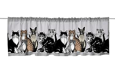 Kappaverho Kitties 60x250 grey