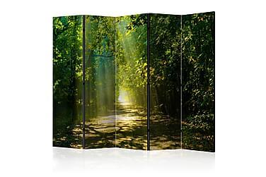 Huoneenjakaja Road In Sunlight 225x172