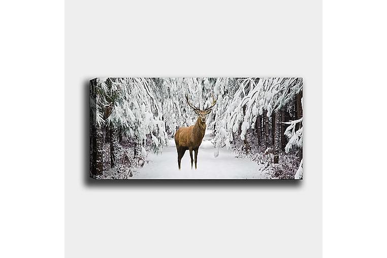 Canvastaulu YTY Animals Monivärinen - 120x50 cm - Sisustustuotteet - Seinäkoristeet - Canvas-taulut
