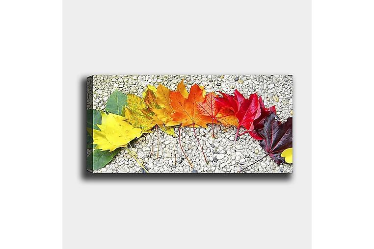Canvastaulu YTY Floral & Botanical Monivärinen - 120x50 cm - Sisustustuotteet - Seinäkoristeet - Canvas-taulut