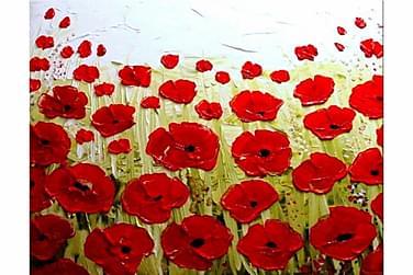 Kukkia 80x80 cm