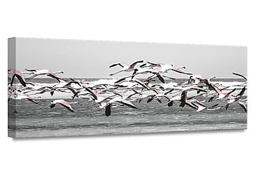 Taulu Canvas Birds2