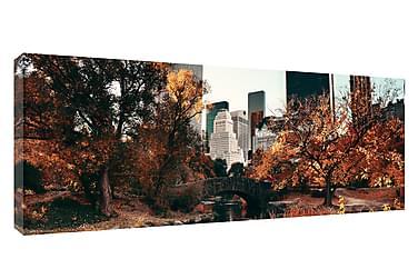 Taulu Canvas NY Central Park