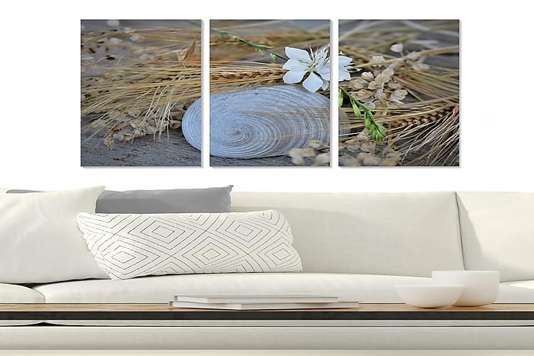 Canvastaulu Floral 3-pak Monivärinen - 20x50 cm - Sisustustuotteet - Seinäkoristeet - Julisteet