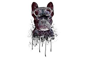 Juliste Blue Dog