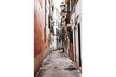 Juliste Pastel Red Street