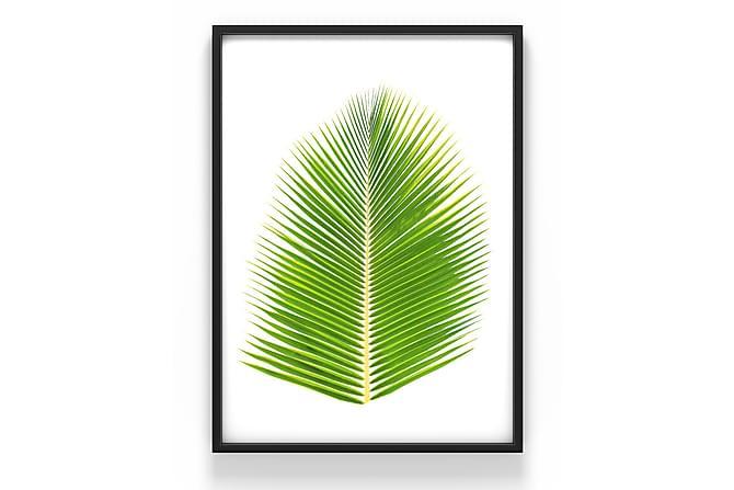 Kasvi Juliste - 50x70 cm - Sisustustuotteet - Seinäkoristeet - Julisteet