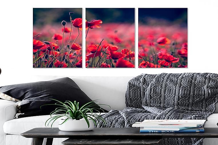 Taulu Floral 3-pak Monivärinen - 20x50 cm - Sisustustuotteet - Seinäkoristeet - Julisteet