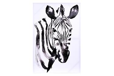 Taulu Zebra