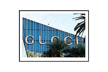 Juliste Gucci Juliste