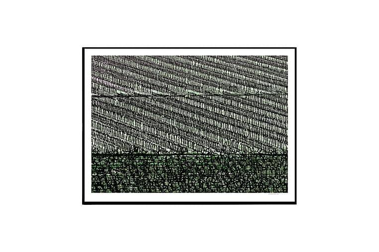 Juliste Provence Wine Field - Saatavilla useita kokoja - Sisustustuotteet - Seinäkoristeet - Julisteet