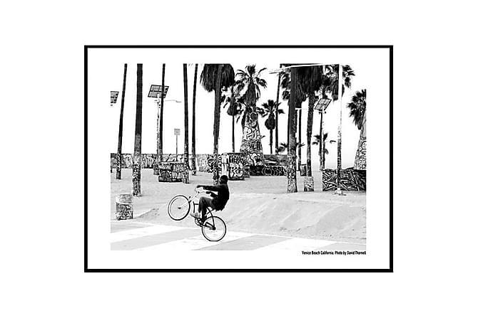 Juliste Venice Biker - Saatavilla useita kokoja - Sisustustuotteet - Seinäkoristeet - Julisteet