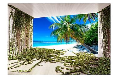 Valokuvatapetti Beach And Ivy 200x140