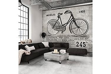 Valokuvatapetti Bicycle Vintage 250x175
