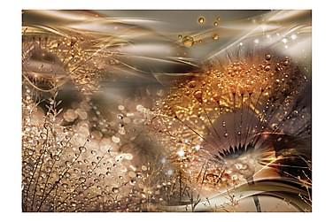 Valokuvatapetti Dandelions' World Gold 350x245