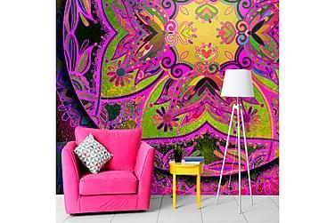 Valokuvatapetti Mandala Pink Expression 250x175