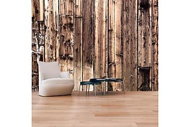 Valokuvatapetti Poetry Of Wood 200x140