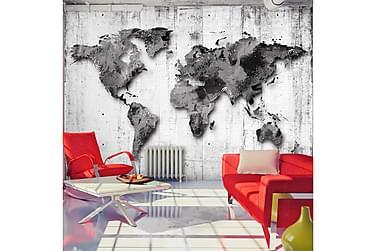 Valokuvatapetti World In Shades Of Gray 300x210