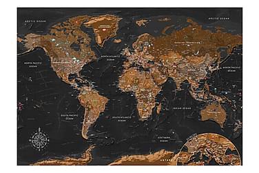 Valokuvatapetti World Stylish Map 150x105
