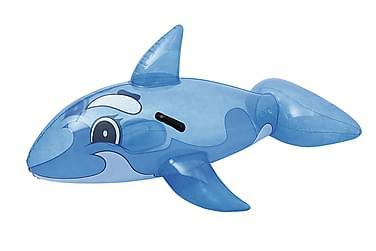 Läpinäkyvä Whale Rider 157x94 cm