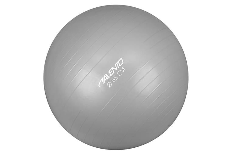 Avento Fitness/jumppapallo halkaisija 65 cm hopea - Hopea - Urheilu  & vapaa-aika - Kotikuntosali - Kuntoilutarvikkeet