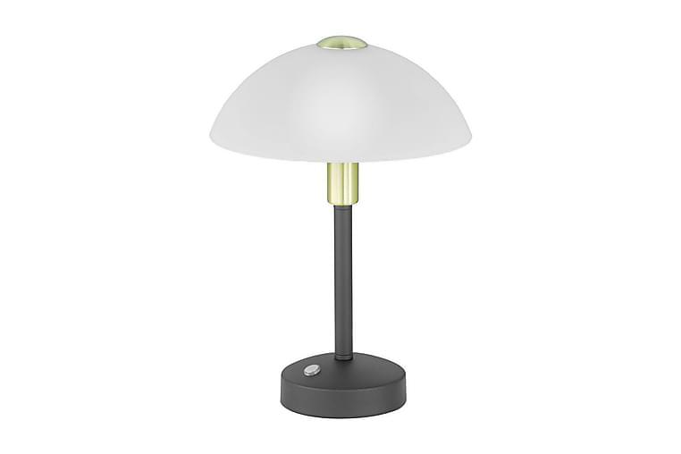 LED-Pöytävalaisin Donna Ø22,5 cm Mattamusta - TRIO - Valaistus - Sisävalaistus & lamput - Pöytävalaisimet